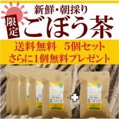 徳島県産朝採り『限定』ごぼう茶 5個セット 1.5g×30袋 さらにもう1個プレゼント