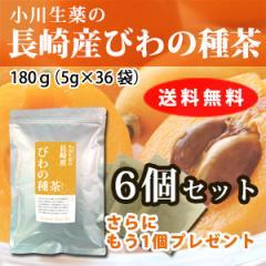 小川生薬の長崎産びわの種茶 5g×36袋 6個+1個セット