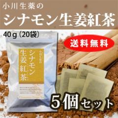 【送料無料】小川生薬 シナモン生姜紅茶 2g×20袋 5個セット