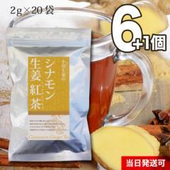 【送料無料】小川生薬 シナモン生姜紅茶 2g×20袋 6個セットさらにもう1個プレゼント