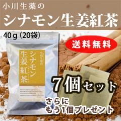 【送料無料】小川生薬 シナモン生姜紅茶 2g×20袋 7個セットさらにもう1個プレゼント