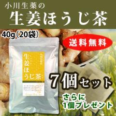 【送料無料】小川生薬 生姜ほうじ茶 2g×20袋 7個セットさらにもう1個プレゼント