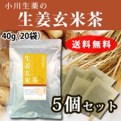 【送料無料】小川生薬 生姜玄米茶 2g×20袋 5個セット