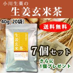 【送料無料】小川生薬 生姜玄米茶 2g×20袋 7個セットさらにもう1個プレゼント