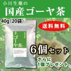 小川生薬の国産ゴーヤ茶 6個セット 2g×20袋 さらにもう1個プレゼント