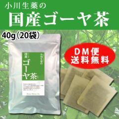 小川生薬の国産ゴーヤ茶 2g×20袋 DM便