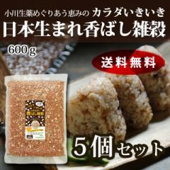【送料無料】小川生薬めぐりあう恵み カラダいきいき日本生まれ香ばし雑穀 600g 5個セット