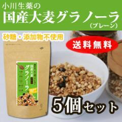 大麦グラノーラ(プレーン) 5個セット 250g