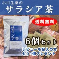 【サラシア100%】サラシア茶 6個セット【さらしあ茶】 3g×30袋 さらにもう1個プレゼント