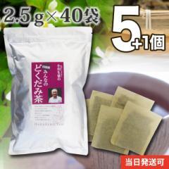 四国産みんなのどくだみ茶 5個セット 2.5g×40袋 さらにもう1個プレゼント