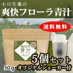 国産れんこんパウダー配合 爽快フローラ青汁 50g 5個セット オリジナルシェーカー付