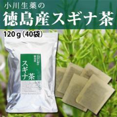 小川生薬 徳島産スギナ茶 3g×40袋