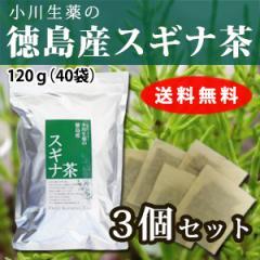 【送料無料】小川生薬 徳島産スギナ茶 3g×40袋 3個セット