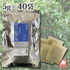 ウラジロガシ茶 5g×40袋