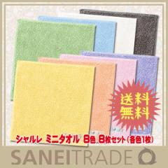 【シャルレ】ミニタオル 8色 ハンカチ代わりに使えるミニサイズ 8枚セット