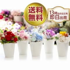 プリザーブドフラワー ポット型 誕生日 結婚式 電報 プレゼント 花 お祝い 贈り物 プリザーブドフラワー母の日 フラワーアレンジメント