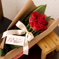 一ダースのバラ (スペシャルレッドローズ花束) 誕生日プレゼント 女性 フラワーギフト 誕生日ギフト バースデープレゼント 彼女 母親 妻