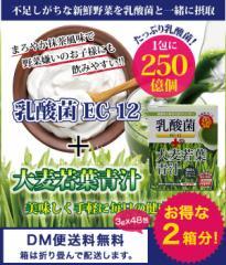 (お得な2箱!) 乳酸菌250億個含有 大麦若葉青汁 国産 大葉若葉 置き換えダイエット24杯×2箱 (送料無料)