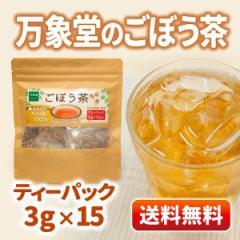 ごぼう茶 ティーパック 3g 15袋入り 国産 【送料無料】