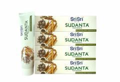 シュリ シュリ アーユルヴェーダ スダンタは磨き粉 100g 4本 Sri Sri Ayurveda sudanta toothPaste[INDIACOS]