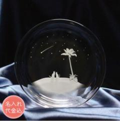 名入れ込み 猫 モチーフの ガラス小皿 【南の島の流れ星】 ねこ ガラス 皿 誕生日 記念日 プレゼント ハンドメイド