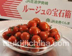トマト『ルージュの宝石箱』群馬産 約900g フルーツトマト ミニトマト とまと 野菜 ギフト プレゼント 贈り物 贈答