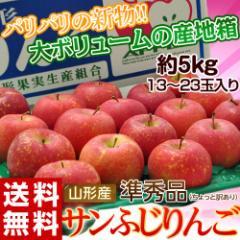 りんご 送料無料 山形産 サンふじ 準秀品 13〜23玉 約5kg
