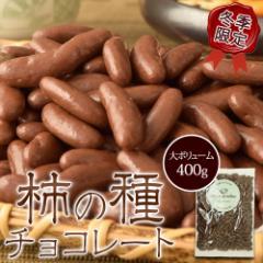 チョコ 柿の種 送料無料 柿の種チョコレート 大容量 400g おやつ お菓子 デザート 常温 ゆうメール 代引き不可 同梱不可