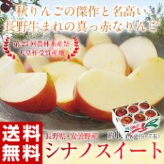 りんご リンゴ 送料無料 長野県 安曇野産「シナノスイート」 約1.7kg (5〜7玉)