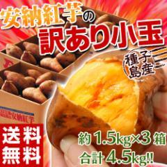 芋 いも 訳あり 安納芋 送料無料 種子島産 安納紅芋 小玉 約1.5キロ×3箱 計約4.5キロ