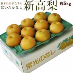 梨 なし ナシ 送料無料 栃木県産JAなすの 新高梨 約5キロ  (5〜14玉)