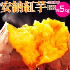 芋 いも 訳あり 安納芋 送料無料 種子島産循環型農法「安納紅芋」 正規品 約5kg ※常温