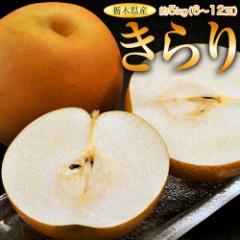 梨 なし ナシ 送料無料 栃木県産 「きらり梨」 6〜12玉 約5キロ