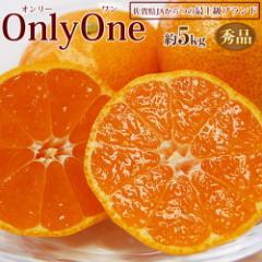 みかん ミカン 送料無料 佐賀県産みかん 「Only One」 秀品 S〜2Sサイズ 約5キロ JAからつ オンリーワン 唐津