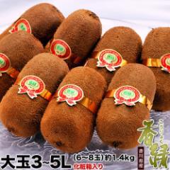 キウイ 送料無料 香川県産 香緑 こうりょく 化粧箱 3〜5L 約1.4キロ 8〜10玉
