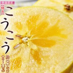 りんご リンゴ 青森県産 こうこう 約3キロ (8〜11玉) 【特A】※3箱まで送料1口で配送 ギフト お歳暮 のし可
