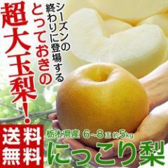梨 なし ナシ 送料無料 栃木県産 にっこり梨 大玉 6〜8玉 秀〜優品 約5キロ