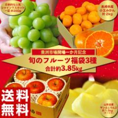 福袋 詰め合わせ 豊洲市場開場一か月記念「旬のフルーツ福袋3種 合計約3.85kg」送料無料