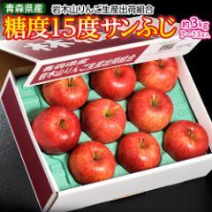 りんご リンゴ 送料無料 青森県産 【糖度15度】 蜜蜜サンふじ 約3キロ (7〜13玉) 岩木山りんご生産出荷組合