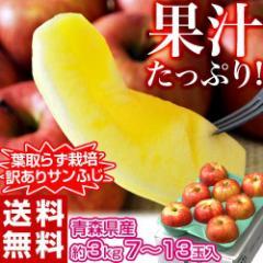 りんご リンゴ 送料無料 青森県産 訳あり 葉とらず サンふじ 約3キロ  (7〜13玉) 岩木山りんご生産出荷組合 産地直送