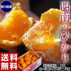 みかん 柑橘 香川県産 新品種のみかん 西南のひかり 約5kg 秀〜優品 M〜3Lサイズ 送料無料
