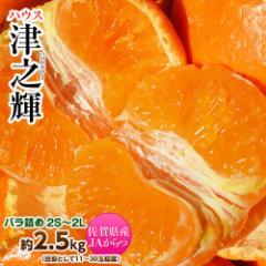 柑橘 送料無料 佐賀産 津之輝 (つのかがやき) 2S〜2Lサイズ 約2.5キロ (11〜30玉) 常温