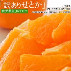 みかん 柑橘 送料無料 佐賀県産 からつ 訳あり せとか ( スレ・傷あり ) 約2.5キロ バラ詰め ※常温