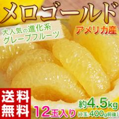 送料無料 アメリカ産 メロゴールド 小玉12玉 約4.5kg
