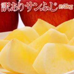 送料無料 青森県産 JA津軽みらいの 訳ありサンふじ 約3kg(9〜11玉)