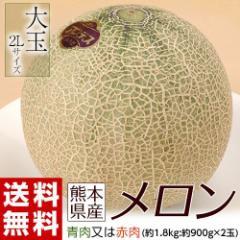 メロン 熊本 熊本県産メロン (青肉又は赤肉) 大玉2Lサイズ 2玉セット 約1.8キロ (約900g×2玉) 常温 送料無料