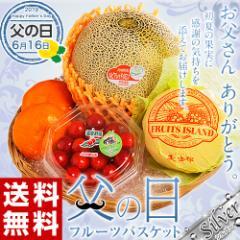 父の日 ギフト フルーツ 国産フルーツバスケット シルバー 4種セット (さくらんぼ・赤肉メロン・美生柑・温室みかん) 送料無料 ※冷蔵
