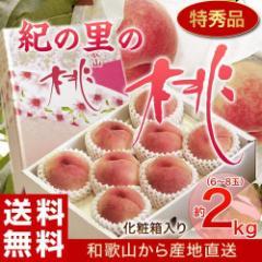 桃 もも モモ お中元 プレゼント ギフト 和歌山 紀の里の桃 特秀品 約2キロ (6〜8玉) 化粧箱 送料無料 産地直送