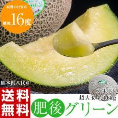 メロン 熊本 八代産 超特大 「肥後グリーン」 1玉 約1.6kg 常温 送料無料