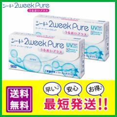 2ウィークピュアうるおいプラス 2箱セット (1箱6枚入り) シード SEED 2week Pure UP 2週間使い捨て 2週間交換